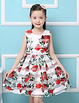 Girl's Cotton Summer Rose  Flowers  Princess  Jumper Skirt  Lace Dress